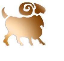 Horoscop zilnic zodia Berbec