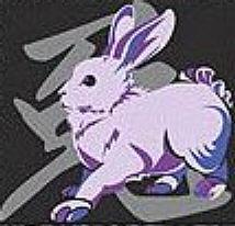 Horoscop Chinezesc 2009: Zodia Iepurelui iepure