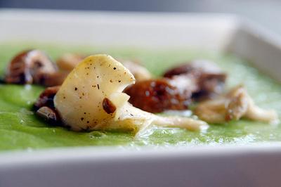supa provensala, retete montignac, retete de supe monti, retete de supe cu brocoli